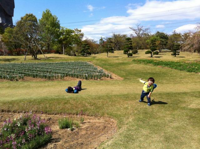 牛久大仏の敷地内は芝生がいっぱい