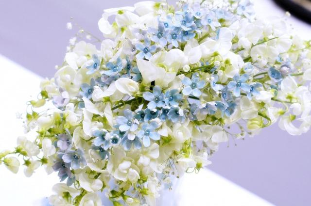 ハーバリウムにおすすめの花材:スターフラワー