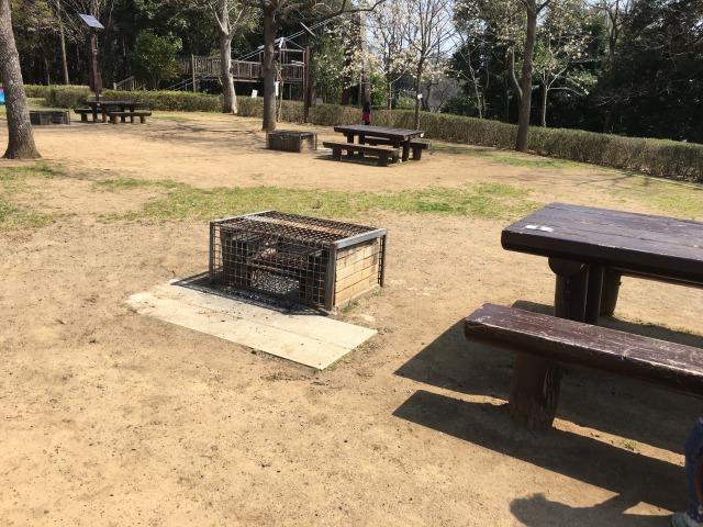 千葉県成田市坂田ヶ池総合公園のキャンプ場かまど付きサイト
