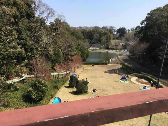千葉県成田市坂田ヶ池総合公園、竜の橋からの眺め