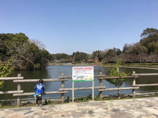 千葉県成田市坂田ヶ池公園、駐車場横の池