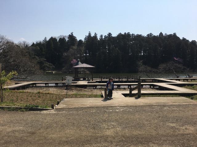 千葉県成田市坂田ヶ池総合公園、湿性植物園