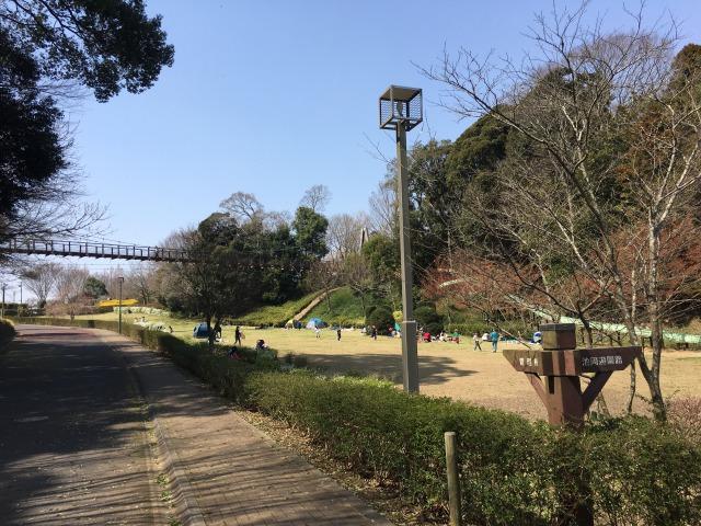 千葉県成田市坂田ヶ池公園、駐車場横にすぐある芝生広場