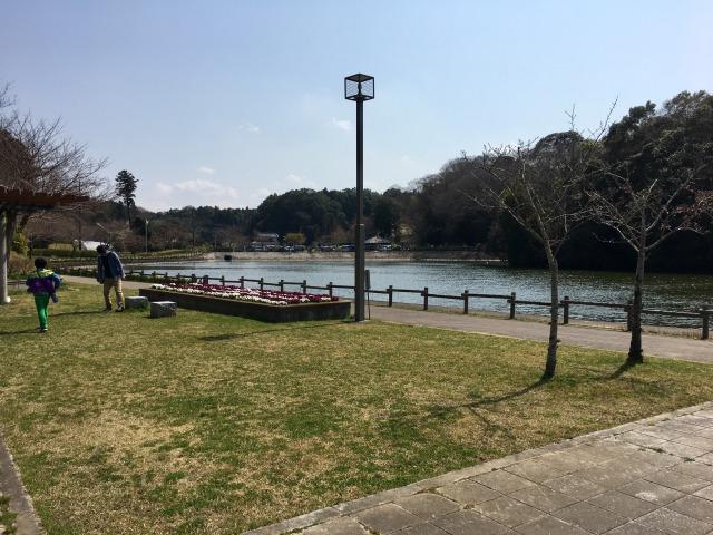 千葉県成田市坂田ヶ池総合公園の釣りエリア