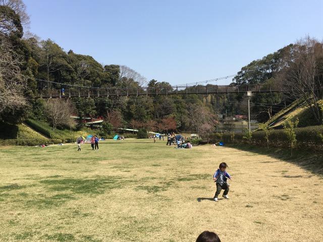 千葉県成田市坂田ヶ池公園、広い芝生広場