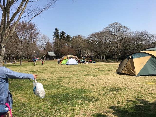 千葉県成田市坂田ヶ池公園、キャンプ場の様子