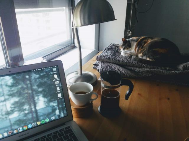 早起きを習慣にする肝は、生活リズムを一定にすること