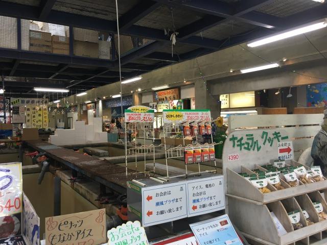 南房総の白浜への旅:道の駅ちくら