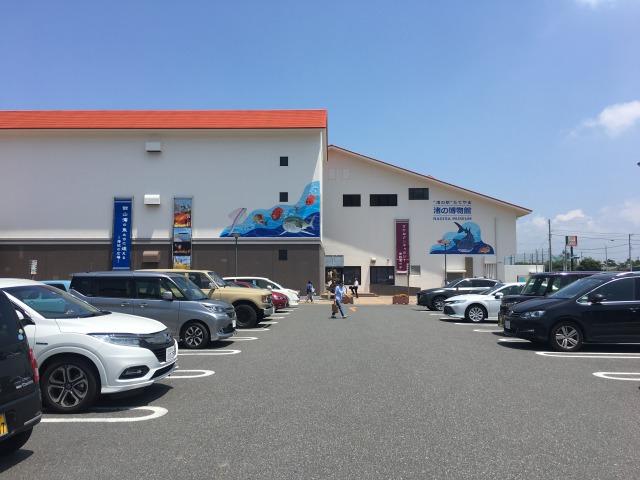 南房総の白浜への旅:渚の駅・たてやま1