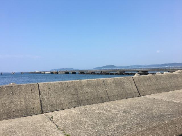 南房総の白浜への旅:渚の駅・たてやま6
