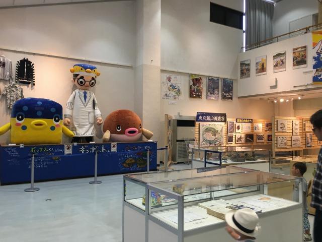 南房総の白浜への旅:渚の駅・たてやま9