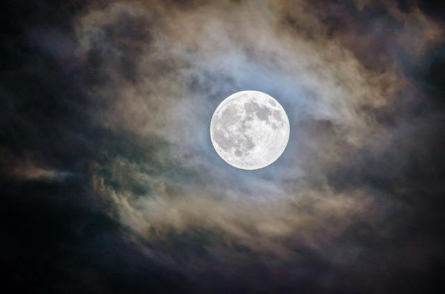 【2019年中秋の名月】お月見の日はまだ2つある!